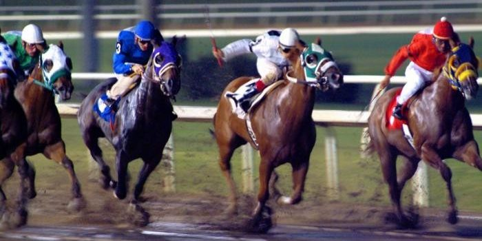 Harrahs Louisiana Downs Gaming Horsemen 2