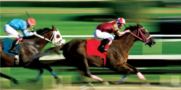 Image Of Horses And Jockey's Racing From OTB At Horseshoe Baltimore