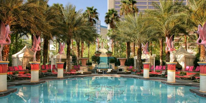 View of the pool at the Flamingo in the daytime.