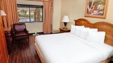 Harrahs-Laughlin-Room-Petstay-Classic-2